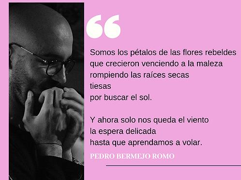 Curso de escritura, poesía: Pedro Bermejo
