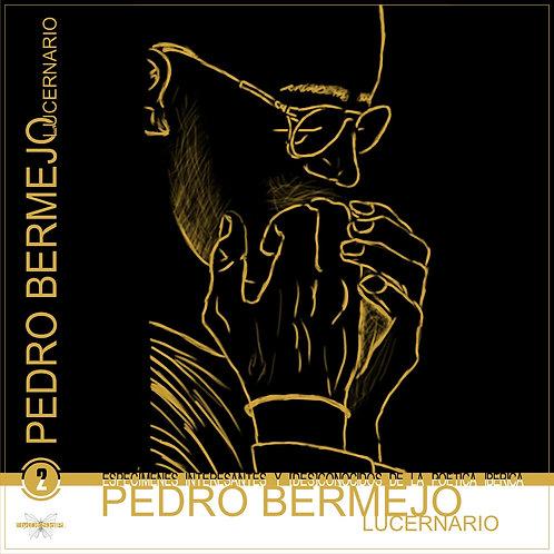 Pedro Bermejo Romo Lucernario