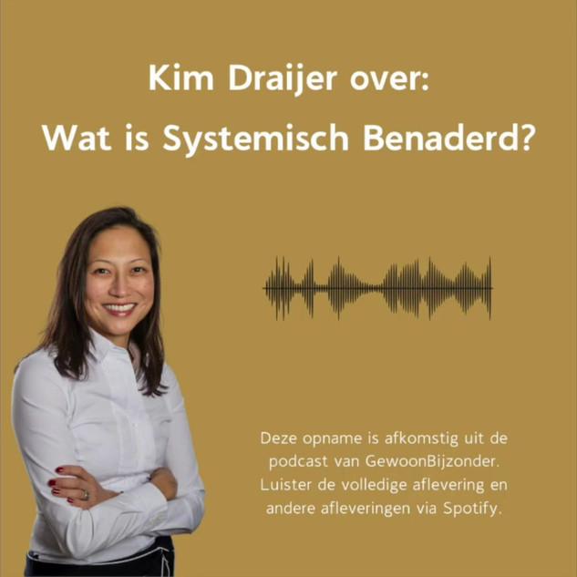 Kim Draijer over Systemisch Benaderd