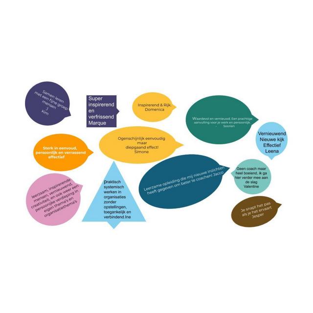 Reacties van deelnemers aan de online basisopleiding Systemisch Benaderd