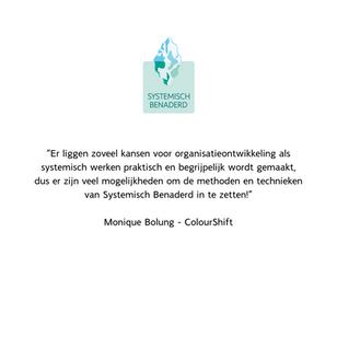 Reactie deelnemers Systemisch Benaderd Monique Bolung
