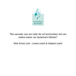 Reactie deelnemers Systemisch Benaderd Hilbrand WestraNiels Ernest Lam