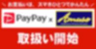 paypay-700.jpg