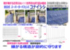 コナイシシ.jpg