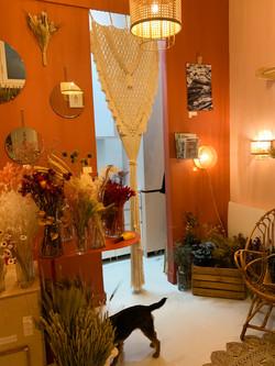 âmebordeaux-decoration boutique#1