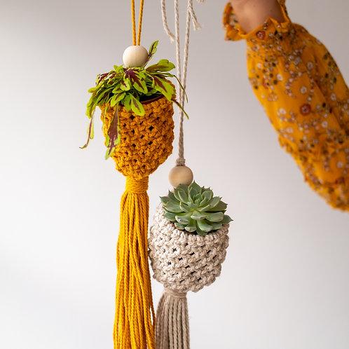 DIY plant hanger kit