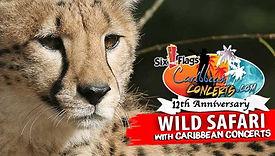 Wild Safari - Six Flags .jpg