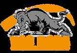 VacBora_Main Logo-04.png