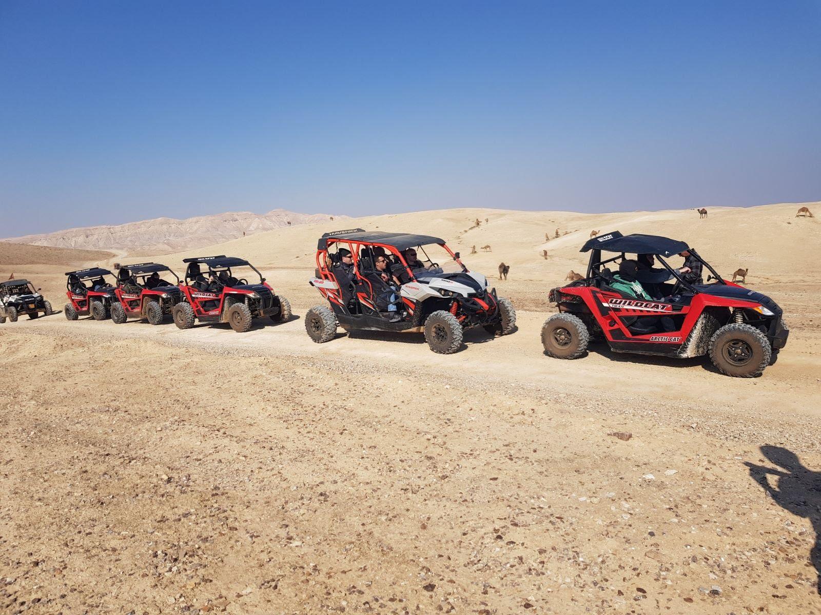 2018 judean desert tour