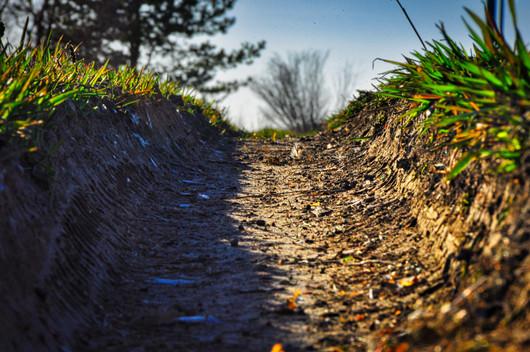 tire track in the judean hills_jerusalem