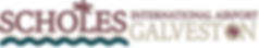 Scholes Airport Logo