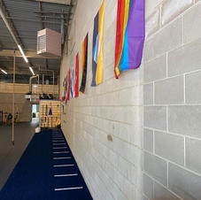 Turf & Flag Wall