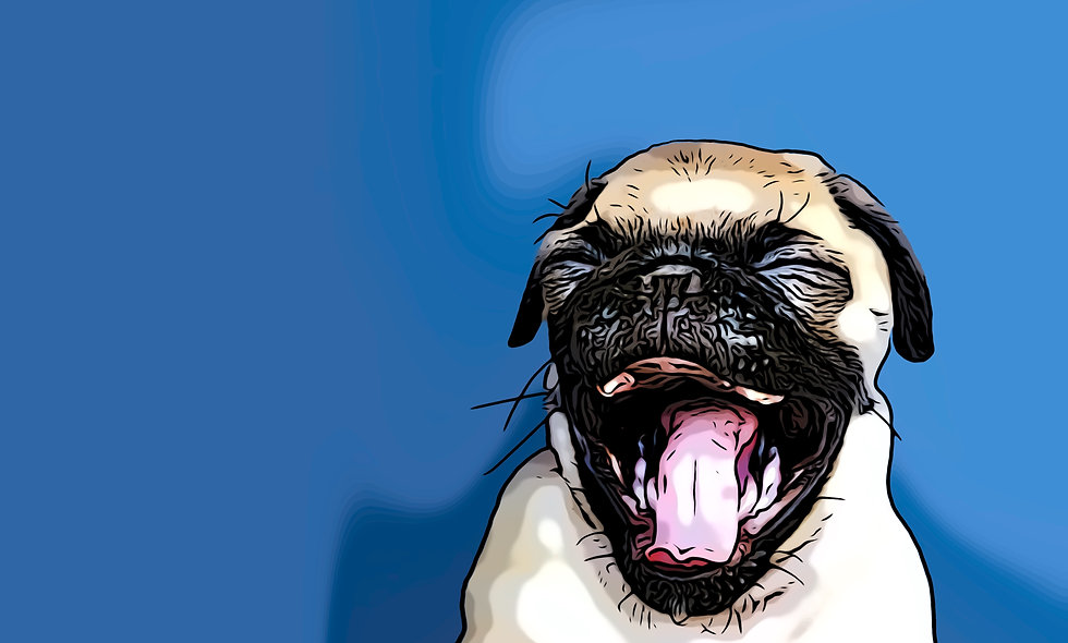 Laughing Pug Signed Print and Digital File