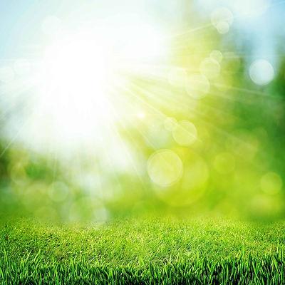 green-grass-in-bokeh-sunshine-for-baby-p
