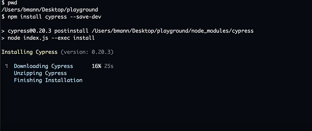 cypress command prompt install