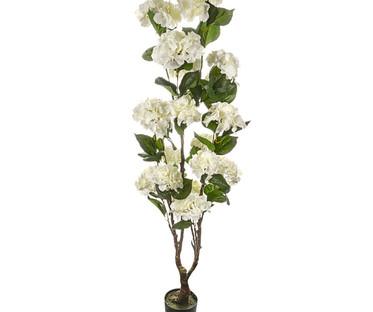 White Hydrangea Trees
