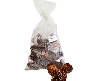 Jumbo Pine Cones