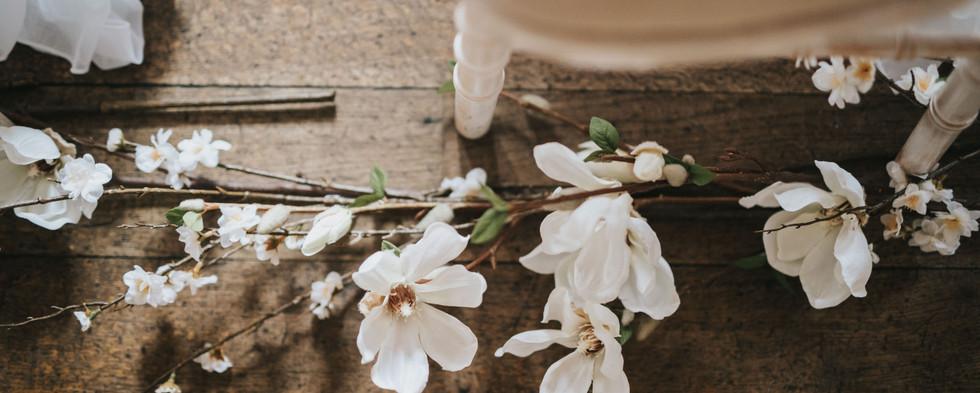 Magnolia Aisle