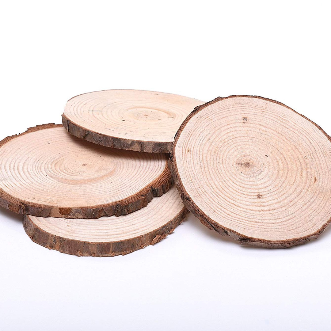 Mini Tree Branch Slices