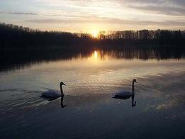 Blue Lake 7.jpg