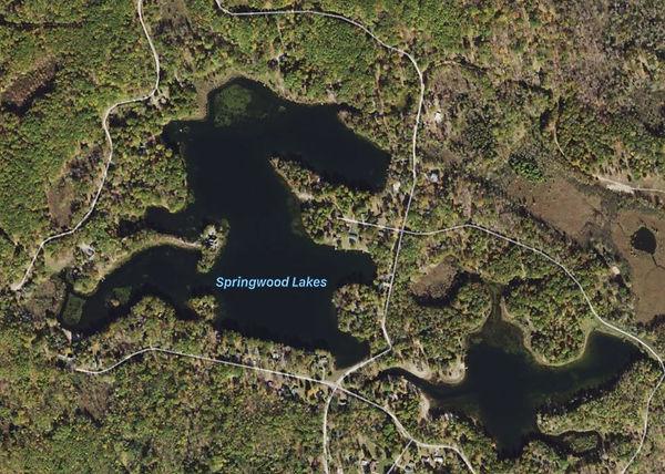 Springwood_Lake.JPG