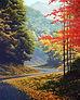 Autumn Gap print.jpg