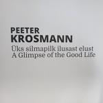 PEETER KROSMANN