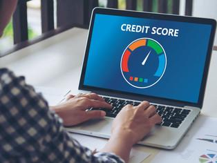 Explainable Neural Networks for Credit Risk Modeling