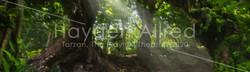 Jungle Clearing_v01
