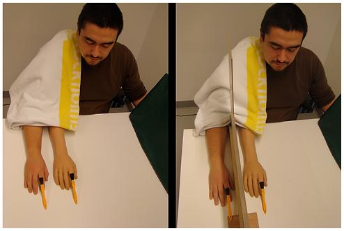 Illusion perceptive: la main en caoutchouc.