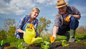 Couple: «Il faut cultiver notre jardin»