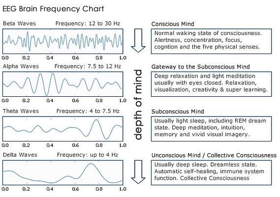 Signatures cérébrales des différents états de conscience