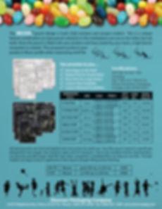 RelyOn Flyer - v10OL - BACK.jpg