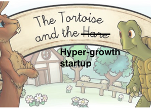 Sifting through the successful hyper-growth startups