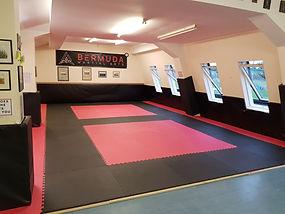Bermuda Martial Arts BJJ in Leicester