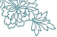 florence aillerie.jpg