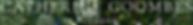 Screen Shot 2018-11-14 at 17.52.16.png