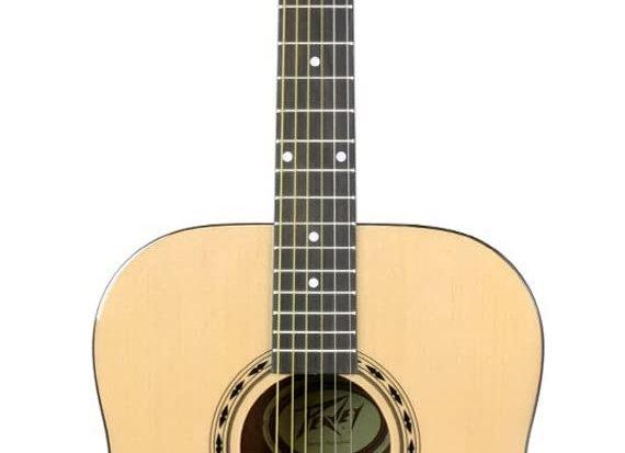 Peavey Acoustic