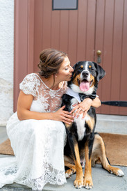 Hitched Tip: Man's Best Friend