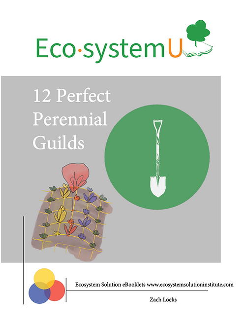 12 Perennial Guilds eBooklet