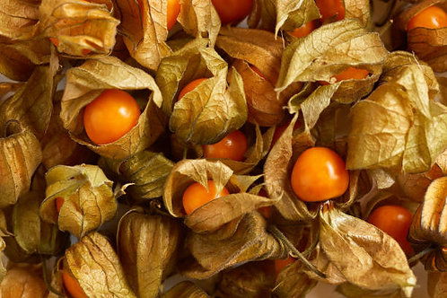 Aunt Molly's Ground Cherry Seed