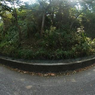 水流東桐花步道入口處720環景圖
