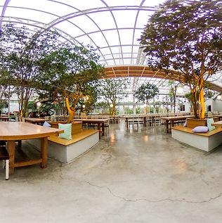 香草菲菲餐廳720環景圖