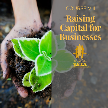 Course Title Raising Capital for Busines