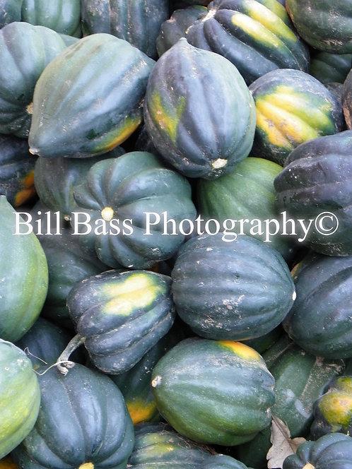 Gourds 4