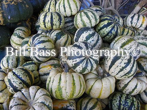 Gourds 1
