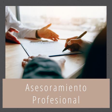 Asesoramiento Profesional