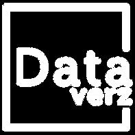 Dataverz-Logo-A2 (2)_edited.png