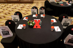 TEDxSereneMeadows2020