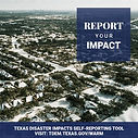 report impact.jpg